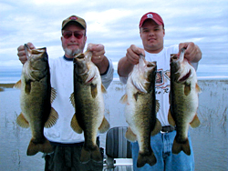bass_fishing_guide_4_pigs250.jpg
